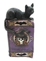 Witchcraft Cat On Book of Dark Magic Spells Color Changing LED Lights Fi... - $24.74