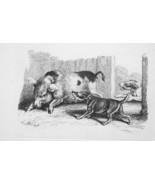 1801 ORIGINAL ETCHING Print by Howitt - Pig in Farmyard Pestered by Dogs - $30.60