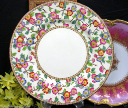 Wedgwood Hand Painted Blossoms Dinner Plate 56 Beaded - $27.41
