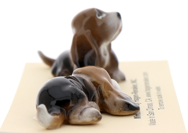 Bassett hounds16
