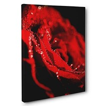Beautiful Rose with Rain Drops Photography CANVAS Wall Art - $34.53