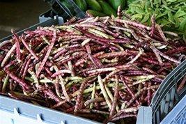 25 Seeds Mississippi Purple Pea Seeds - High Yields of Reddish-purple Pods - $3.71
