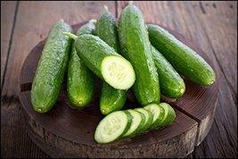 2000 seeds, or 2 oz - Cucumber Garden Sweet Burpless Seed - $55.44