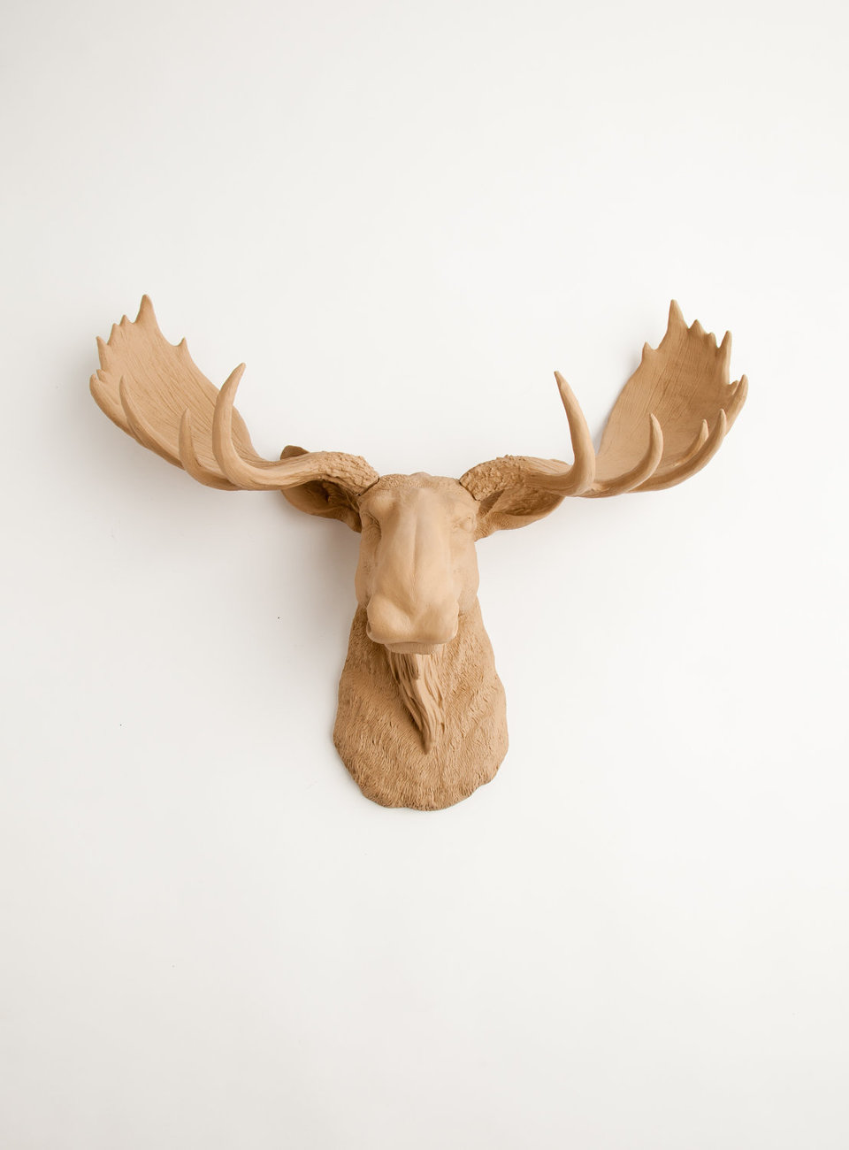 The Agatha  Tan Resin Moose Head White Faux Taxidermy. Rooms For Rent In North Hollywood. Living Room Leather Furniture. Decorative Letter A. Hotel Room Nyc. Ikea Dining Room Furniture. Cheap Decorative Pillows For Sale. Cheap Room Divider Ideas. Decorative Electrical Switches