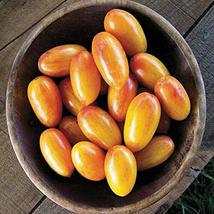 Blush Tomato Seeds Plant Seeds 150 Seeds Vegetables Seeds tkomguy - $27.71