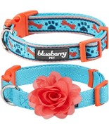 Blueberry Pet Pack of 2 Multiple Designs Spring Gift Mix and Match Sky ... - $33.36
