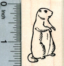 St Patrick/'s Day Cat playing Harp Rubber Stamp  K16502 WM