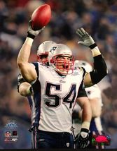 Tedy Bruschi Patriots SB 39 Celebration 8X10 Color Football Memorabilia ... - $5.99