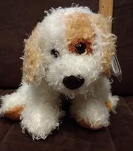 TY BEANIE BUDDY BUDDIES DIGGS PLUSH DOG WHITE GOLD TAN BROWN CURLY 2004 - $9.89