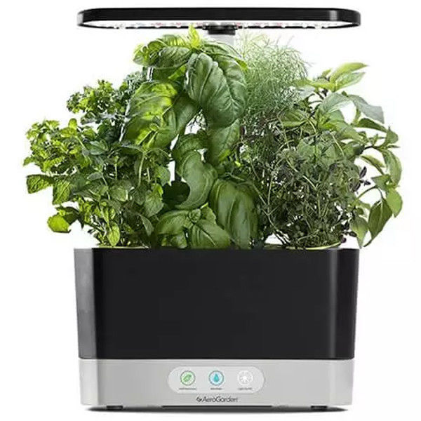 Primary image for MiracleGro AeroGarden Harvest with Gourmet Herbs Seed 6 Pod Kit - Black
