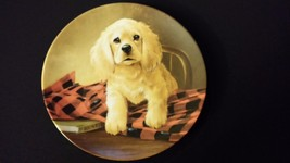 1988 Shirt Tales The Cocker Spaniel Knowles Vintage Collector Edition Plate - $35.00