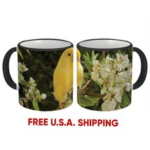 Canary : Mug Bird Animal Nature Watchers Ecology Exotic Yellow Gift Mb07183 - $19.90