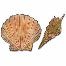 Sizzix Tim Holtz Bigz Die with Texture Fades Folder - Seashells - $29.99