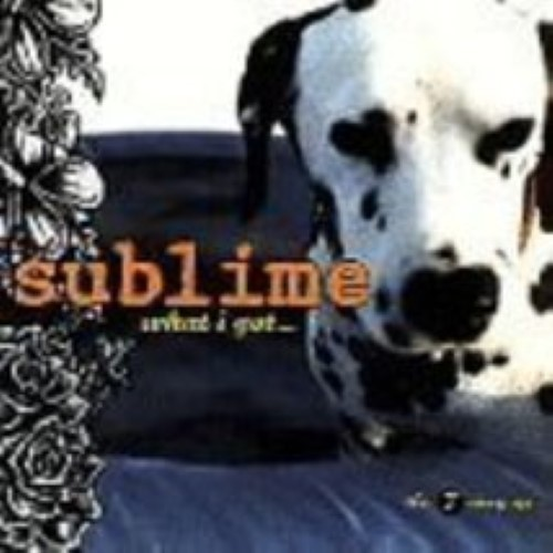 What I Got by Sublime Cd