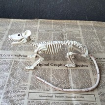 New Skeleton Rat Plastic Animal Skeleton Bones For Horror Halloween Deco... - €9,41 EUR