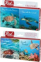Sea Turtle Sayings 4 Piece Absorbent Ceramic Coaster Set