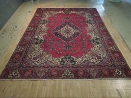 10' x 14' Age-Old Persian Sarouk Picturesque Distinctive Rug Handmade - $1,492.30