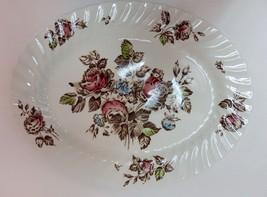 "Johnson Brothers China Devon Spray Pattern Brown/Multi Color 14"" Oval Platter  - $14.54"