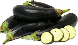 1/8 Oz Seeds of Money Maker II Eggplants - $29.70