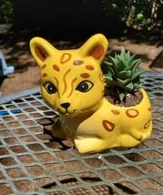 "Yellow Cat Planter with Haworthia Succulent, 4"" glazed ceramic, leopard jaguar image 1"