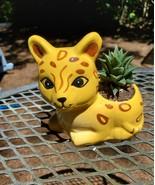 "Yellow Cat Planter with Haworthia Succulent, 4"" glazed ceramic, leopard ... - $14.99"
