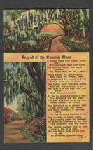 Linen Postcard Legend of the Spanish Moss Curt Teich - $7.50