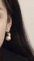 Authentic Christian Dior 2019 MY ABCDIOR TRIBALE EARRING STAR image 6