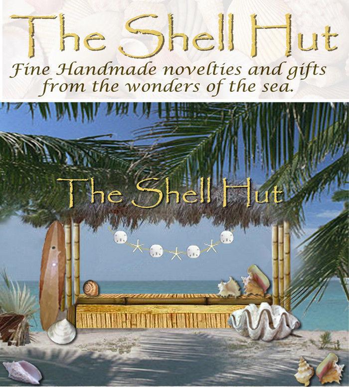 Seashell Flower Shell Christmas Ornament Wall Hanging Tropical Beach House #1