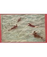 GREAT SALT LAKE UTAH Floaters UT Swimmers - $8.00