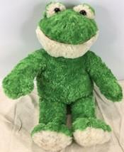 "Build-A-Bear Workshop Spring Frog Plush 17"" Green Soft Shaggy Fur EUC - $19.75"