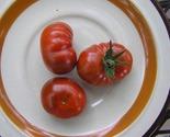 cbsw 3wbmk   kgrhqv  g8ezedbspjfbnh jpnre    3 thumb155 crop