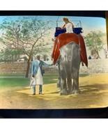 Vtg Magic Lantern Glass Slide Photo Hand Color India Elephant Transporta... - $14.20