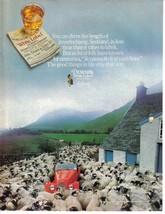 1985 Dewar's Scotch Whisky Inverlocharig Sheep Full Page Color Print Ad  NM - $2.99
