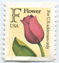 S3- F Flower Non Denominated Stamp Scott # 2517 - $0.49