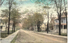Elmira Street at Troy Bradford County Pennsylvania 1908 Post Card - $5.00