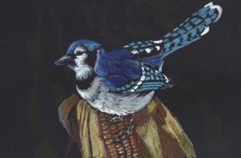"Akimova: BLUE JAY, bird, garden, size approx. 9""x 6"" - $15.00"