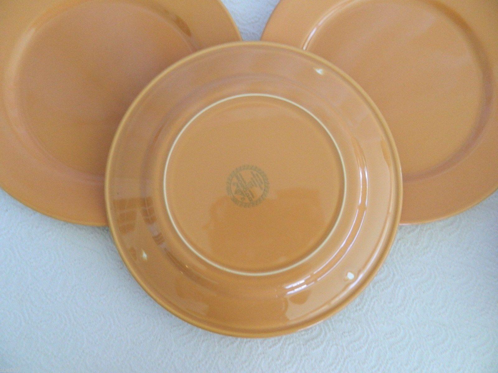 ... 9 Pcs Dudson Finest Vitrified Paintbox Burnt Orange Dinnerware Plates Bowls Cups ... & 9 Pcs Dudson Finest Vitrified Paintbox Burnt and 47 similar items