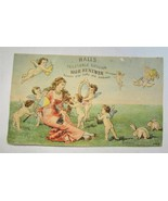 Atq Victorian Trade Card Halls Vegetable Sicilian Hair Renewer Nashua, N... - $6.90