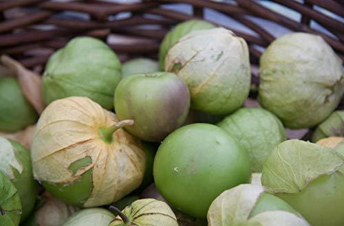 Primary image for 100 Seeds Tomatillo Seeds Ground Little Lanterns Tomatillo for Pots Garden Seeds