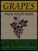 Grapes Open Daily Wine Fruit Vintage Retro Classic Metal Sign - $24.95