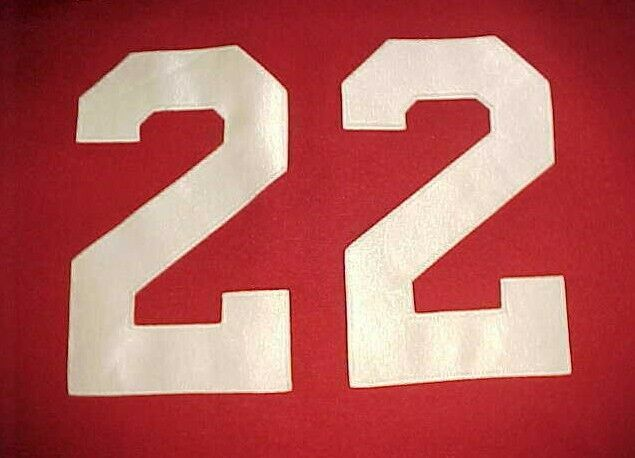 Houston Astros Roger Clemens #22 MLB NL 2004-2006 Brick Red Scripted Jersey 2XL