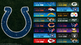 Indianapolis Colts 2017 NFL Schedule turf Poster 24 X 36 inch  - $18.99