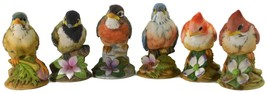 Six Andrea Baby Chick Birds Made From Hand Painted Porcelain by Sadek - £123.46 GBP