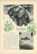1933 Hunting African Elephants Belgian Congo Natives African Hunt - $15.00