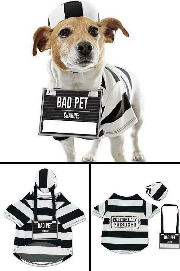 Bootique Prisoner Pet Costume, X-Small