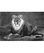 LION of Nubia Africa - 1876 ETCHING Print after Painting by Lancon - $53.96