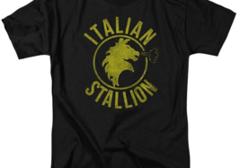 The Italian Stallion Rocky Balboa Retro distressed graphic T-shirt MGM209B image 2
