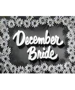 DECEMBER BRIDE (1954) 119 Episodes - $34.95