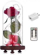 Beauty And The Beast Red Rose Kit Enchanted And Led Light With Fallen P... - $49.70