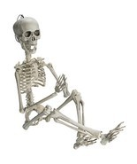 Prextex 19rdquo Posable Halloween Skeleton- Full Body Halloween Skeleton... - €13,56 EUR